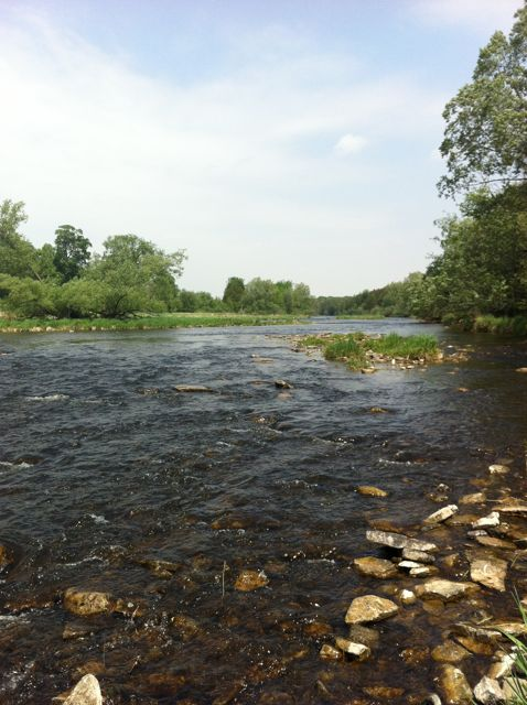 Wilson s fly fishing centre was the perfect place to learn for Grand river fishing