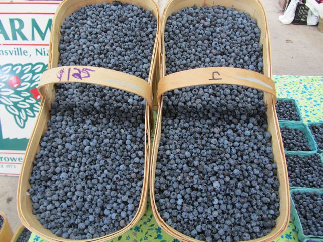 wildblueberries