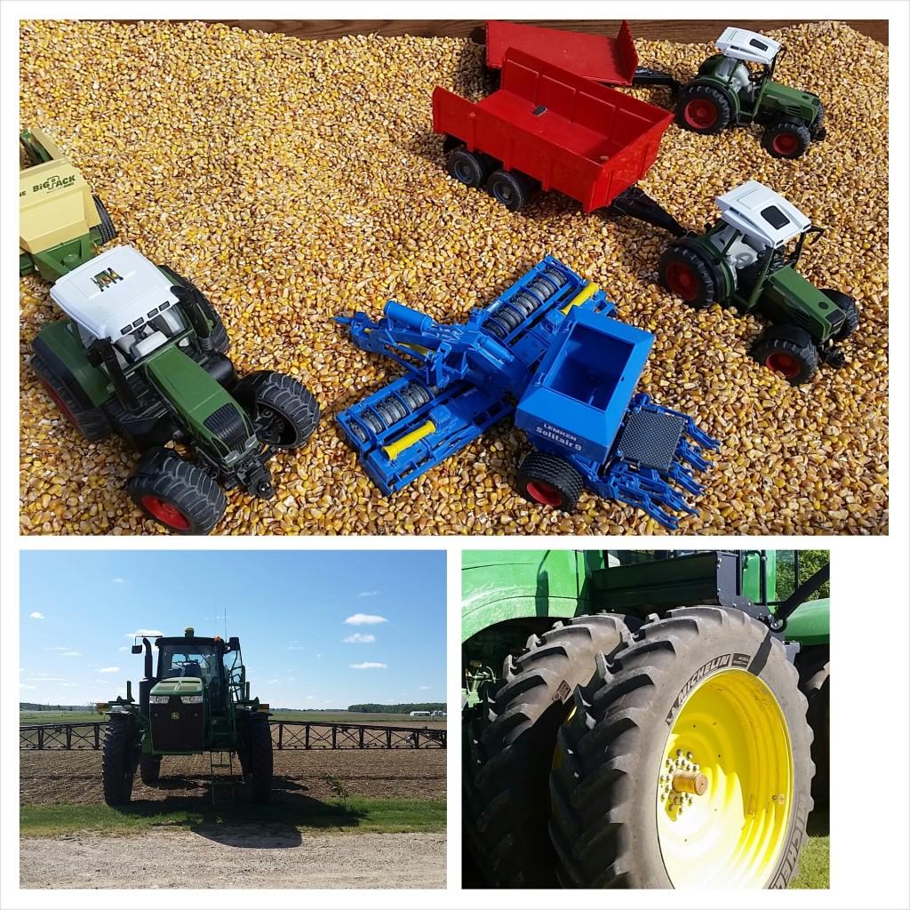 farm - grain