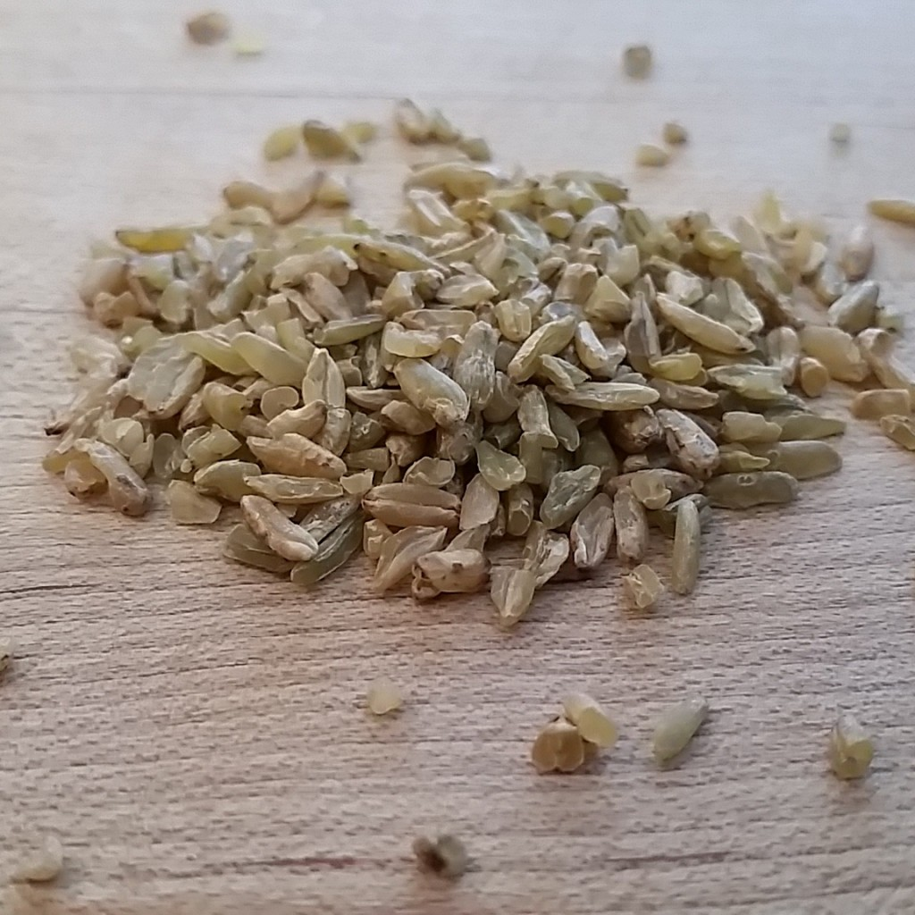 aroma - grain