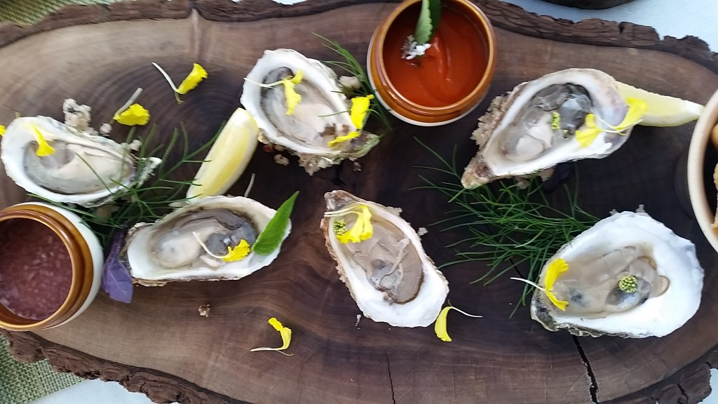 langdon - oysters2