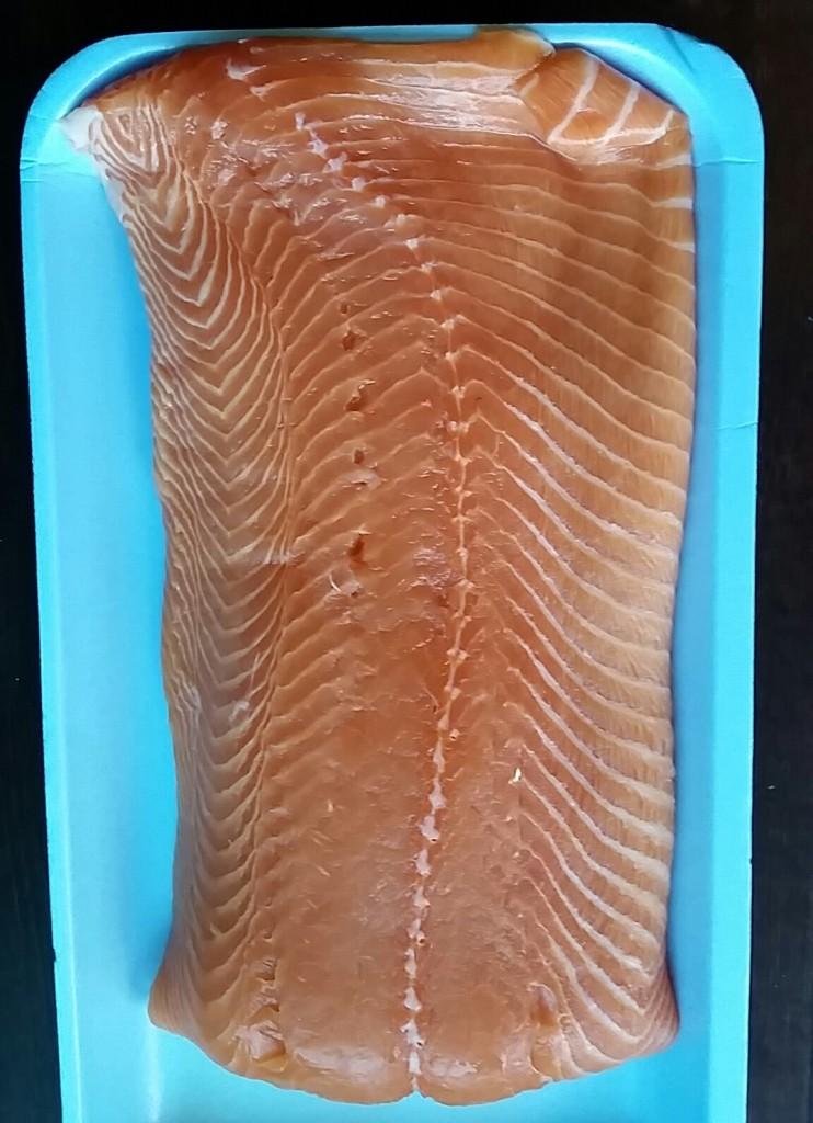 salmon - fish