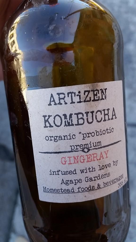 ottawa - kombucha