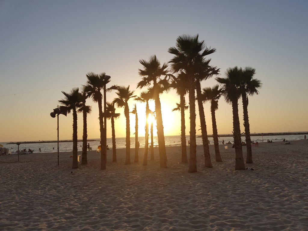 sheraton-beach-sunset