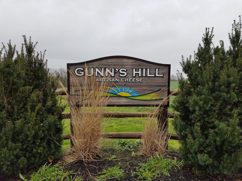 cheese - gunns hill