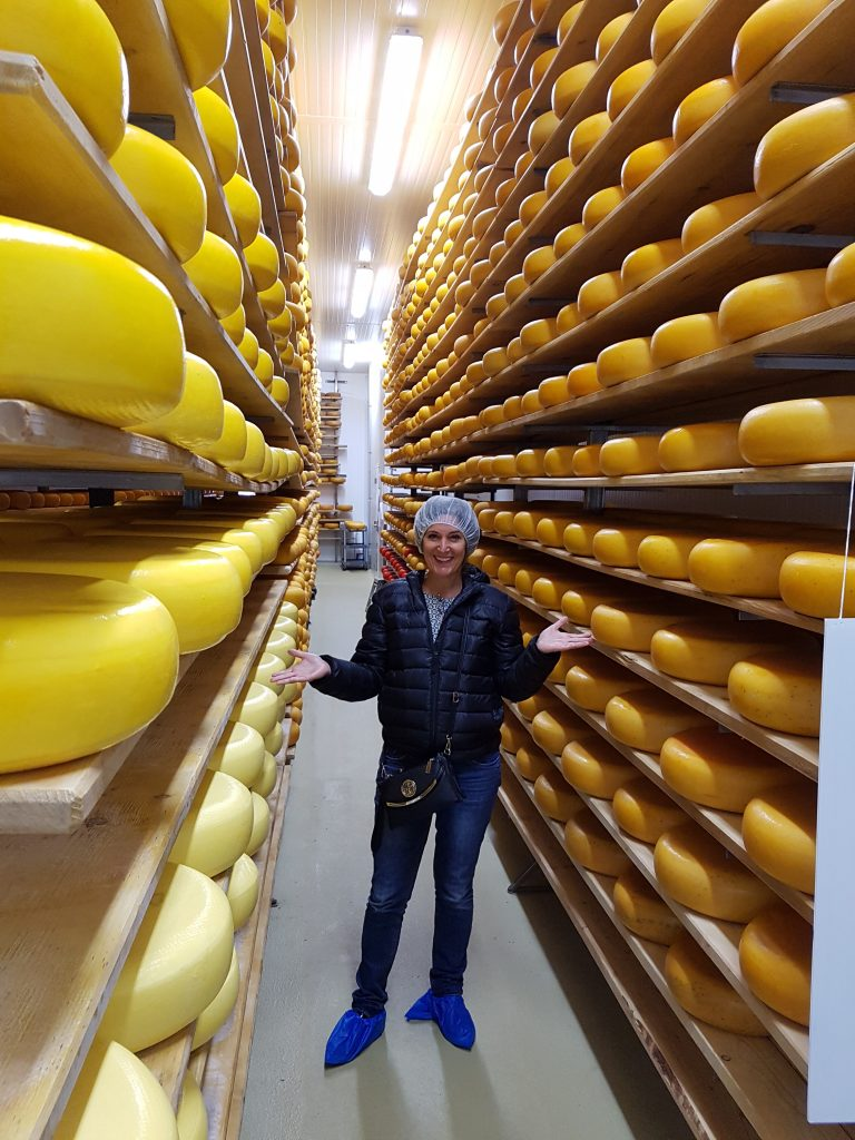 cheese - moutnain oak tour